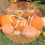 The Ultimate Guide to Fall in Charleston