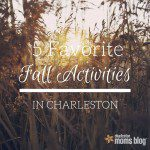 5 Favorite Fall Activities in Charleston