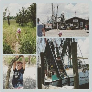 shem creek fun