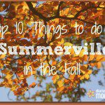 Top 10 Things to do in Summerville this Fall