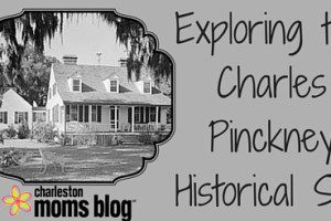 Exploring the Charles Pinckney Historical Site