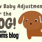 New Baby Adjustments…for the Dog(s)!