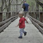 Kid-Friendly Hiking Trails in Charleston