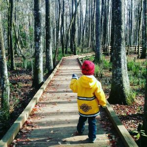 UPDATED! Kid-Friendly Hiking Trails in Charleston