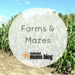 2017 Guide to Farms and Mazes in Charleston