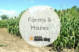 Charleston Farms and Corn Mazes