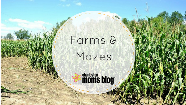 Farms and Mazes in Charleston