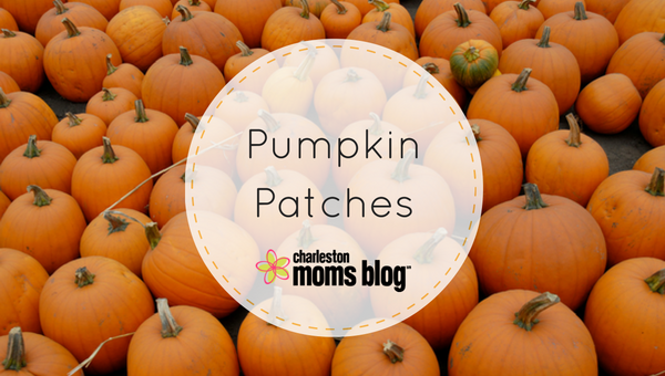 Charleston Pumpkin Patches