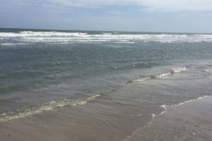 The good, the bad, and the sandy; a review of Charleston area beaches