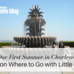 Our First Summer in Charleston: Tips on Where to Go with Little Ones