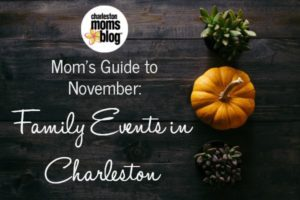 Moms Guide to November FI
