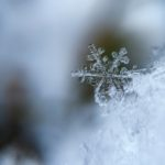 A southern snowstorm to remember