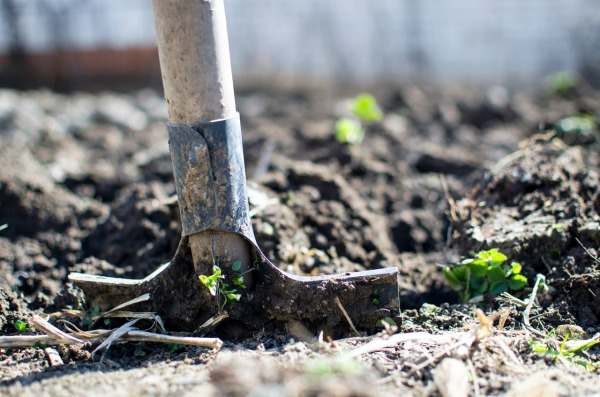 Four Ways to Prepare Your Yard for Spring - Before Planting