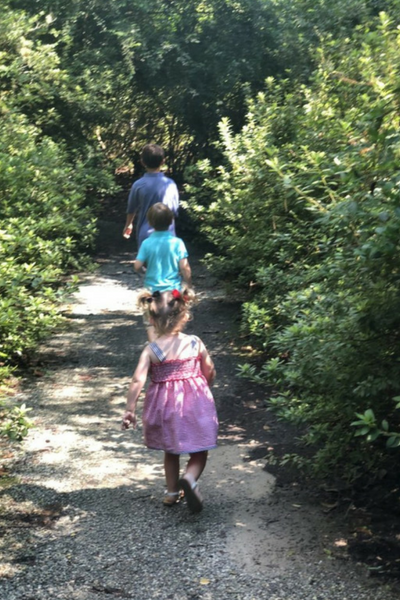 Summer Transitions for Our Blended Family