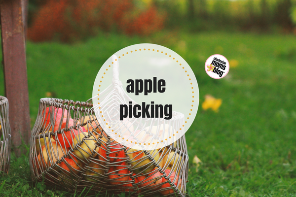 A Guide to Apple Picking in the Carolinas!