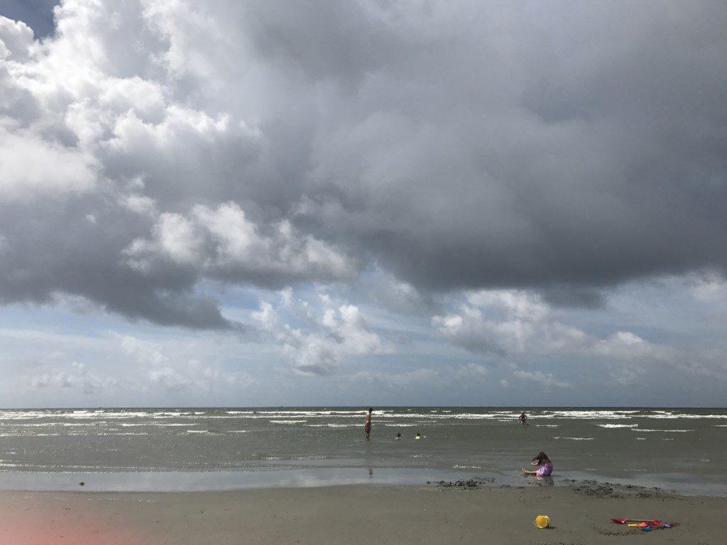 Charleston's beaches