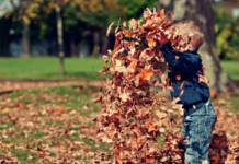 A Family Bucket List for Some Fall-Themed Fun Charleston Moms