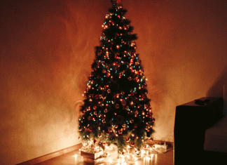The Christmas Tree Debate Charleston Moms