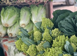 Sea Island Farmers Market is opening on Johns Island