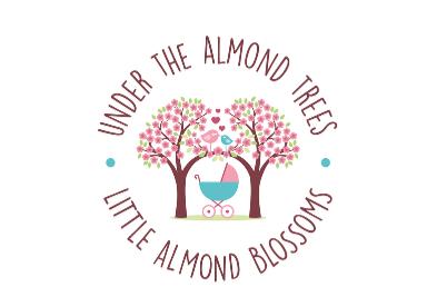 Almond Trees Almond Blossoms 405x270